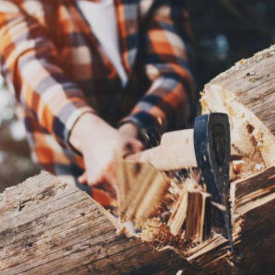 chop wood
